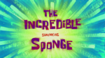 The Incredible Shrinking Sponge