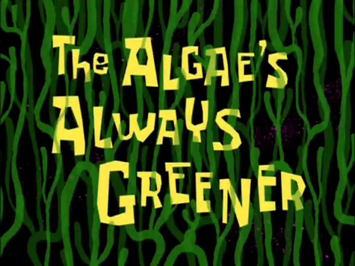 The algaes always greener encyclopedia spongebobia fandom