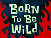 Born to Be Wild title card