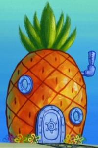 SpongeBob's pineapple house in Season 8-1