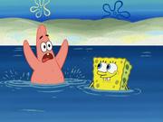 SpongeBoard 005