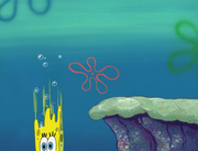 The Sponge Who Could Fly 204