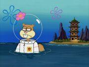 Karate Island 114