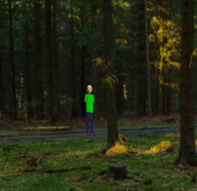 Baldi Caught in Forest at 3AM (GONE WRONG)