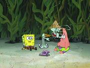 Club SpongeBob 104