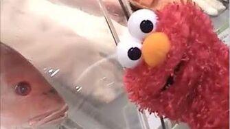Elmo Goes to McDonalds