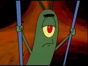 Plankton steamy