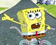 SpongeBob 4dride