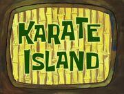 Karate Island 035