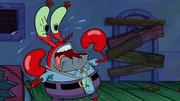 Plankton Paranoia 116