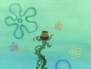 Club SpongeBob 006