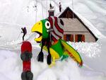 Potty ski gear