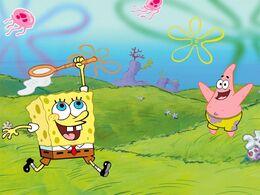 Spongebob squarepants-8769