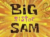 Большая сестра Сэм