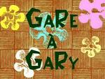 Gare à Gary