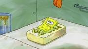 The Incredible Shrinking Sponge 221