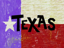 Texas title card