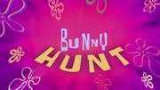 Bunnyfixed