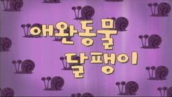 Petsitterpattitlecardkorean