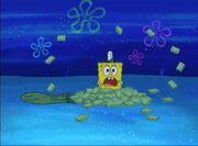 Moldy Sponge 007b