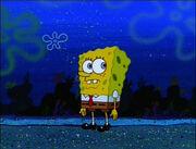 Plankton! 048