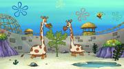 Who R Zoo 013