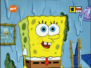 Nick de spongebob