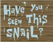 Have You Seen This Snail Title Card