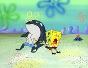 Spongebobdoncel
