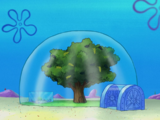 Sandy's treedome/gallery