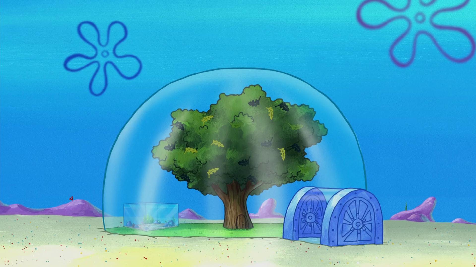Sandy S Treedome Encyclopedia Spongebobia Fandom