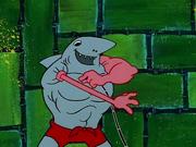 MuscleBob BuffPants 062