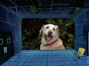 Plankton! 128 (1998)