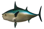 Realistic Fish Head HD