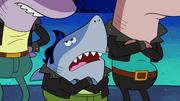 Sharks vs. Pods 078