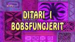 Ditariibobsfungjerit
