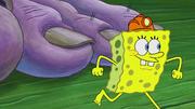 The Incredible Shrinking Sponge 212
