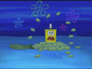 Moldy Sponge 007