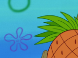 Pineapple RV (vehicle)