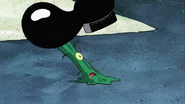 Plankton Squished (24)