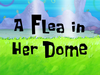 A Flea in Her Dome title card