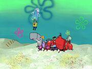 Bubble Buddy 144