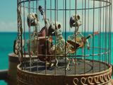 Dead parrots