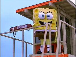 SpongeGuard on Duty 029