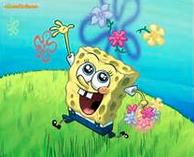 Spring Background Fr Contest