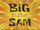 Big Sister Sam/gallery
