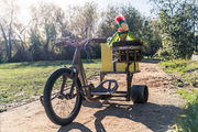 SpongeBob-Potty-the-Parrot-on-bike