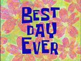 Best Day Ever/transcript