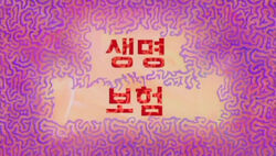 Life Insurance (Korean)