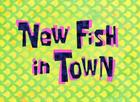 Новая рыбка в городе